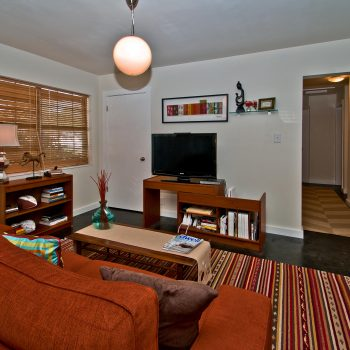 Wallace Street South Tampa Fl Home Staging Cardinal