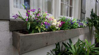 Henry St. Tampa flower box