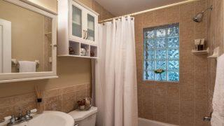 Henry St. Tampa guest bath 2