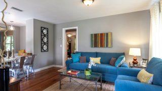 Henry St. Tampa living 3