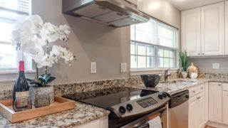 Granite Countertops & Orchids